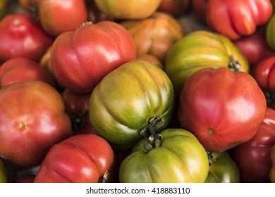 Organic Heirloom Italian Tomatoes, Como, Italy