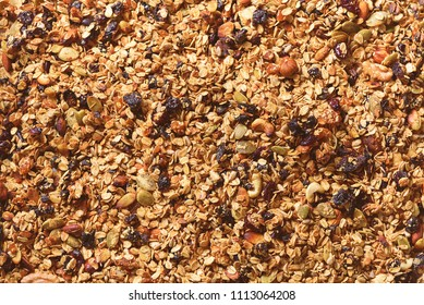Organic homemade roasted granola with nuts and raisins on baking sheet. Food for breakfast. Meal background, granola texture.