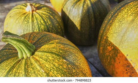 Organic Irish Pumpkin