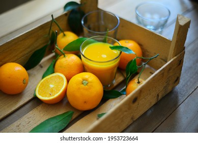 Organic juicy oranges kept in a wooden tray with glass of freshly squeezed orange juice. Harvested best orange fruits straight from the farm.