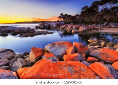 Organic painting of ocean shaped bazalt rocks in Bay of Fires near Binalong of Tasmania at sunrise. Bright red colour from bacteria on surface of the rocks.