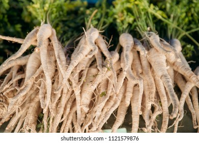 Organic Pastinaca Or Parsnips. Flowering Plant On Local Agricultural Vegetable Market. Autumn Harvest