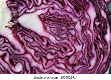 Organic patterns on close up of red cabbage on slate background