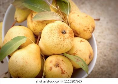 Organic pear, healthy fruit, juicu fruit - organic pears in white bowl closeup