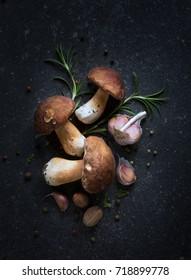 organic porcini Mushroom; seasoning forest Mushroom and Italian Spices Herb