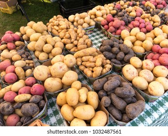 organic potatoes on sale at outdoor farmers market