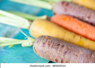 Organic Raw Carrots Close Up On Colorful Blue Wood Texture Table Background. Selective Focus. Defocused.