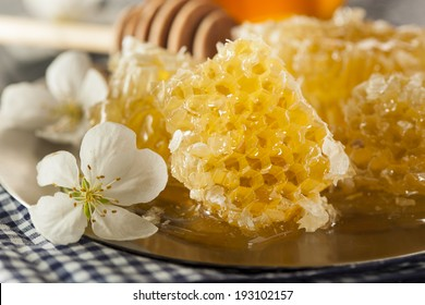 Organic Raw Golden Honey Comb on a Background