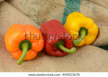 Organic raw orange red and yellow bell peppers on burlap