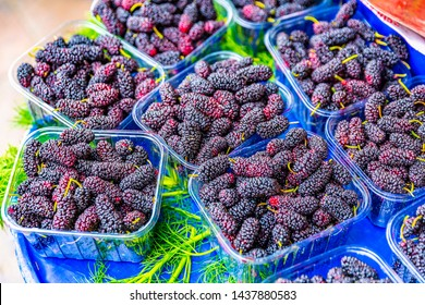 Organic Red mulberry . Mulberry fruit in summertime. Fresh Mulberry. healthy mulberry fruit.