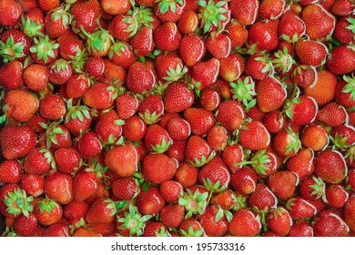 Organic Red Strawberries Floating, Washed, Cleaned in Water