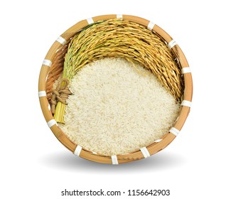 Organic rice,ear of paddy, ears of Thai jasmine rice in basket isolated on white background. This has clipping path.