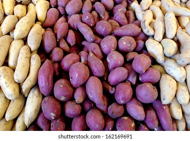 Organic root vegetable display of yams / sweet potatoes.
