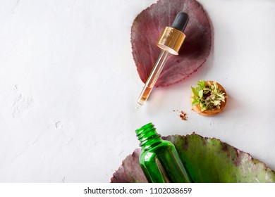 Organic Spa Cosmetic With Herbal Ingredients. Vegetable serum for skin. Serum with herbal extracts. Serum in a transparent glass bottle with a pipette and green twig on a white background