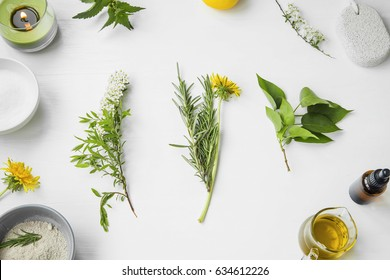Organic spa. natural herbal skincare ingredients with herbs and plants, clay, olive oil, essential oil,top view
