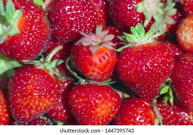 organic strawberries full frame natural fruits berries