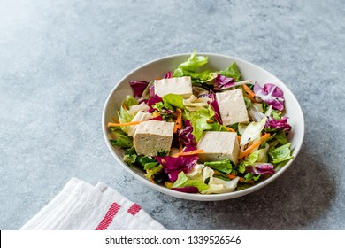 Organic Vegan Asian Tofu Salad with Red Cabbage, Lettuce and Carrot Slices.