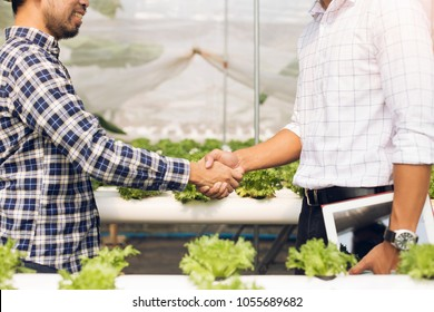 Organic vegetable growers shake hands with customers in the hydroponics vegetable garden after negotiating a successful The concept of organic agriculture is delivered straight to the customer.