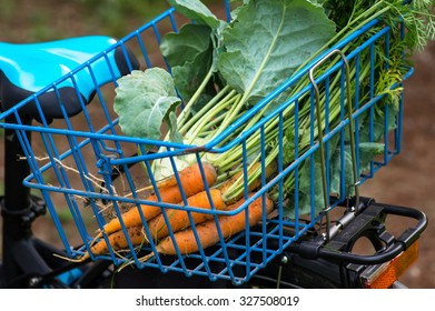 Organic vegetables and bicycle