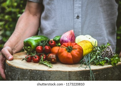 Organic vegetables. Farmers hands with freshly harvested vegetables. Fresh organic tomatoes