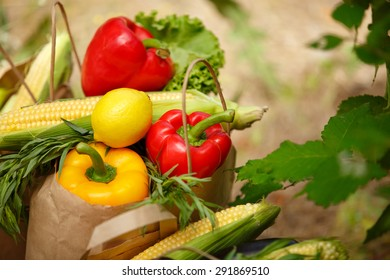 Organic vegetables fresh food, various colorful raw vegetables, Fresh Bio Vegetable in package Over Nature Background, organic corn, pepper and green salad, healthy eating, selective focus