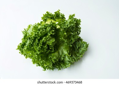 Organic vegetables are grown in the north of Thailand by the valuable project, Salad leaves with Frillice Iceberg, isolated on white background