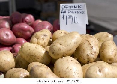 Organic white potatoes