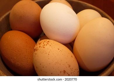 Organically produced free range eggs showing diversity and variety