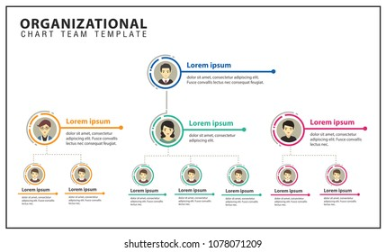Organization Chart - Team , Business , Corporation , Presentation ,Officer