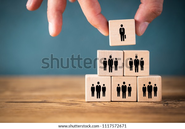 organization and team structure symbolized with cubes