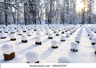 Organized brick piles in symmetrical lines and rows in park, covered with deep snow, cold winter day. Originally - benches in park, but the seating part is removed. Not a cemetery.