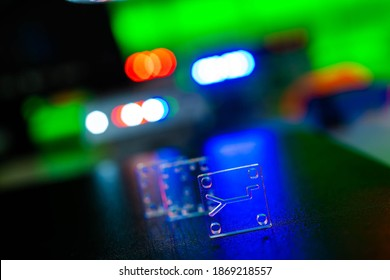 Organ-on-a-chip (OOC) - microfluidic device chip that simulates biological organs that is type of artificial organ. Prototype of design lab-on-a-chip in microfluidic laboratory - Shutterstock ID 1869218557