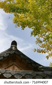 Oriental Asian style house with Yellow ginkgo tree and blue sky from South Korea