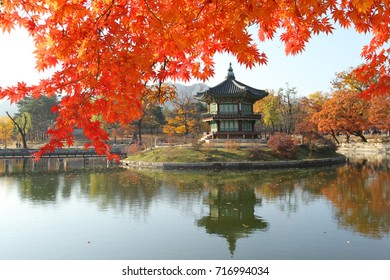 Oriental Asian style palace with pond in Seoul South Korea with Red Maple leaf