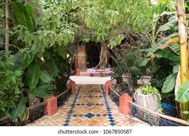 Oriental garden in the inner city of marakesh in marocco