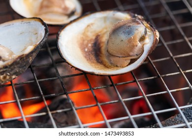 Oriental hard clams are being grilled on thai charcoal stove.