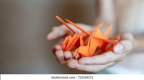 Origami birds in boy hands