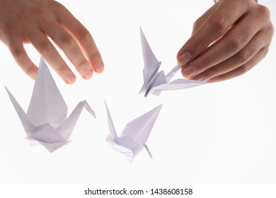 Origami in the shape of a swan