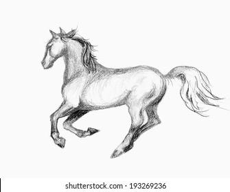 original art, hand drawing of running horse