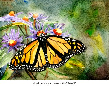 original art, watercolor painting, Monarch butterfly on flowers