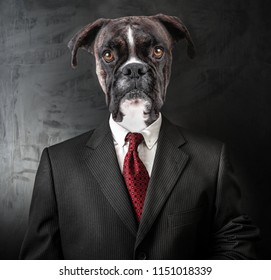 an Original Elegant Business Dog