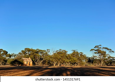 Original home paddock for a farming family after W.W.1 Western Australia.Farm house made of mud bricks, and iron roof, vintage rural homestead, with trees in the background.