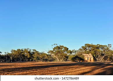Original home paddock for a farming family after W.W.1 W. Australia. Old farm house made of mud bricks, and iron roof, vintage rural homestead, with trees in the background, taken just after sunrise.