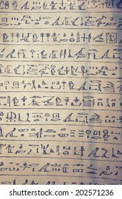 original manuscript of egyptian hieroglyphs