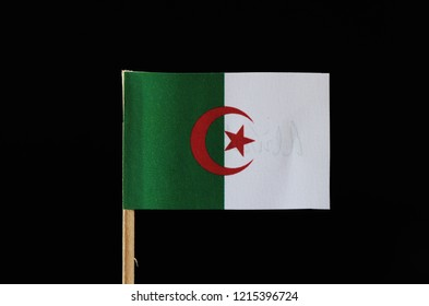 A original and official flag of Algeria on toothpick on black background. Consists of two equal vertical bars, green and white with a red star and crescent.