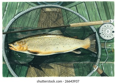 An original watercolor painting (by myself as the artist) of a Brownie - a fresh water trout.