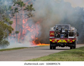 Orlando, FL. 3 March 2018 -  the Orange County Fire Rescue Department works to contain and then put out a 4-acre fire in the Orlando Wedgefield subdivision.  No houses were damaged by the fire.