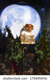 ORLANDO, FL – NOV 24: ET Extra Terrestrial at Madame Tussauds Wax Museum in Orlando, Florida, on Nov 24, 2019.  It displays waxworks of famous historical figures, popular film, television characters