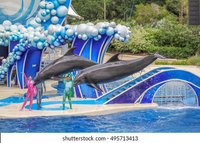Orlando, Florida, United States - April 22, 2012: two dolphins jumps in Azul Show at Seaworld. Seaworld is an animal theme park, oceanarium and to a marine mammal park.