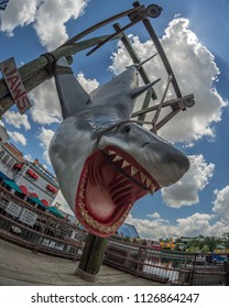 Orlando, Florida, USA - June 2015 : Universal Studios Theme Park, Life size shark display from the film Jaws, close up shot taken at angle with fisheye lens